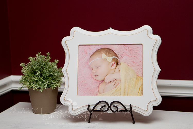 Newborn Baby Photographers Winston Salem NC - Newborn Baby Photography Winston Salem Triad